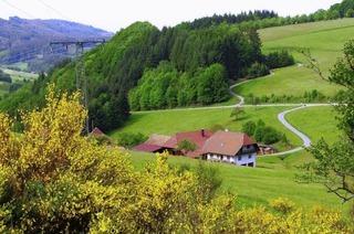 Geisberg (Schweighausen)