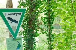 Naturschutzgebiet Rappennestgießen