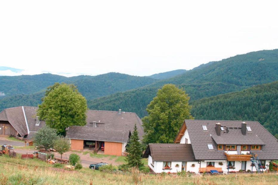 Ortsteil Münzenried - Horben