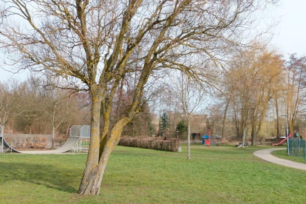 Mehrgenerationenspielplatz Scheuermatten (Buchheim) - March