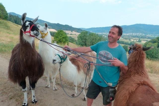 Lama-Trekking (Ruhbauernhof)