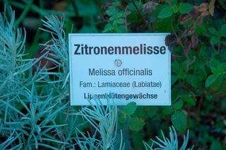 Kräuter-Erlebnispfad (Hofsgrund)