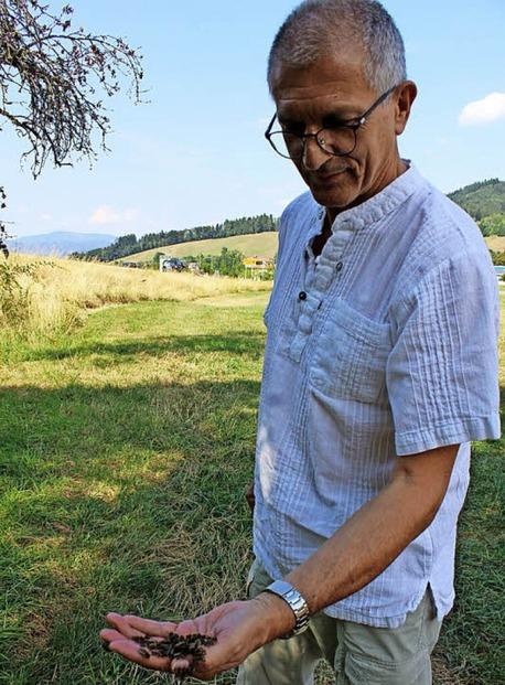 Eine Erfindung aus Oberried erobert die Bienenwelt - Badische Zeitung TICKET