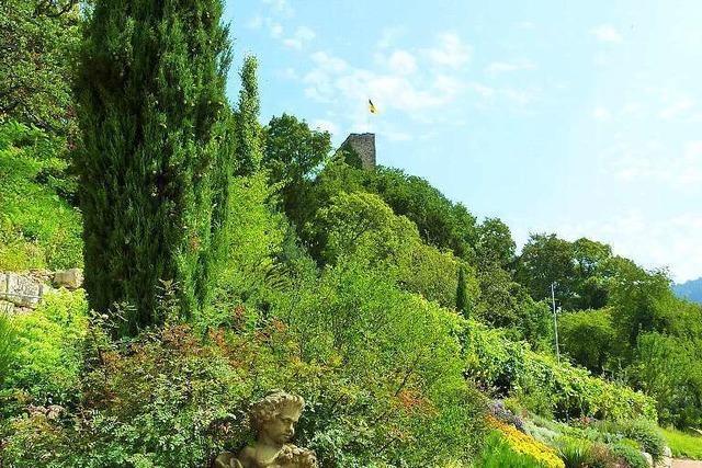 Kräutergarten Hildegard von Bingen