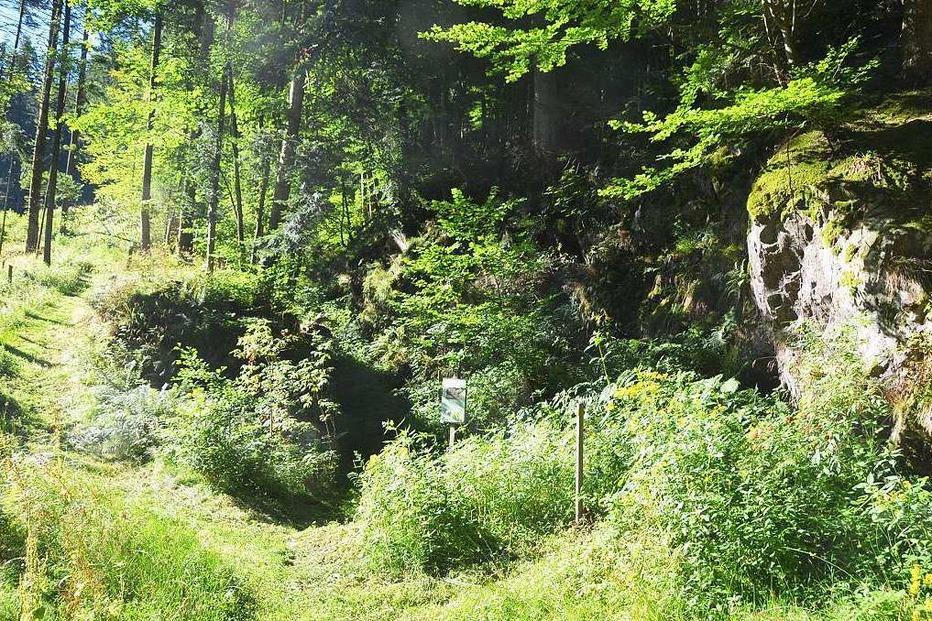 Birchiburg - Bollschweil