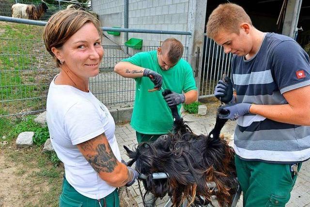 So arbeiten Landschaftsgärtner und Tierpädagogen auf dem Mundenhof