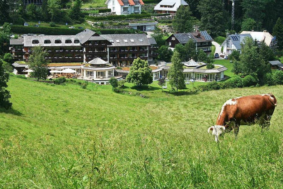 Hotel Kesslermühle - Hinterzarten