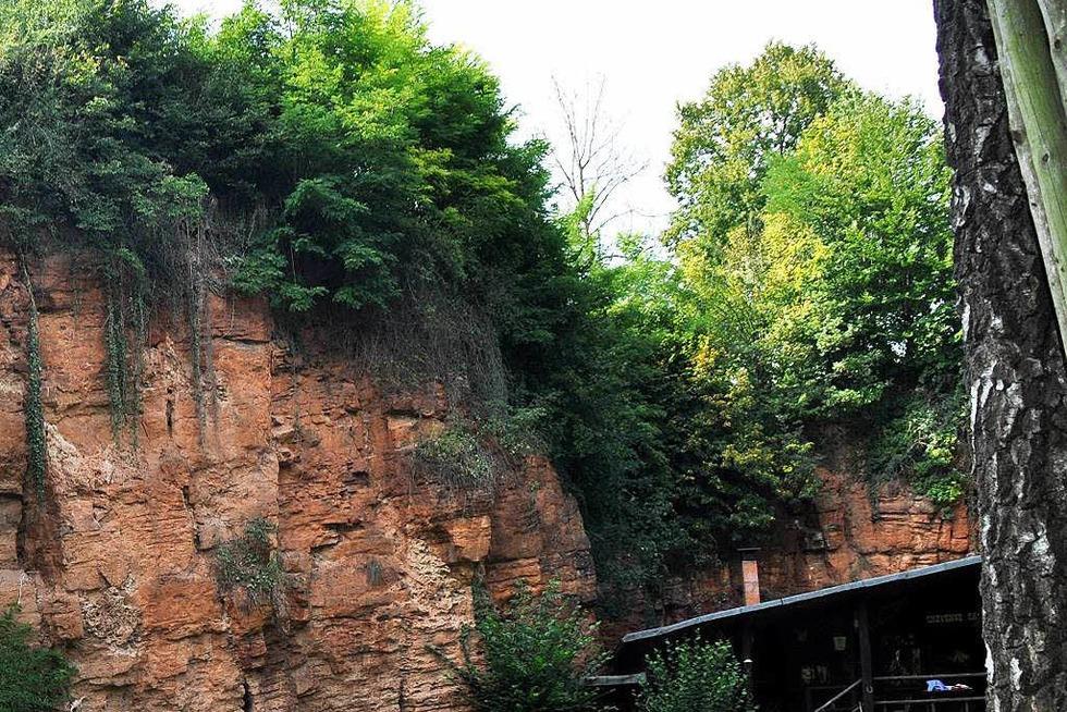 Roter Felsen (Hugstetten) - March
