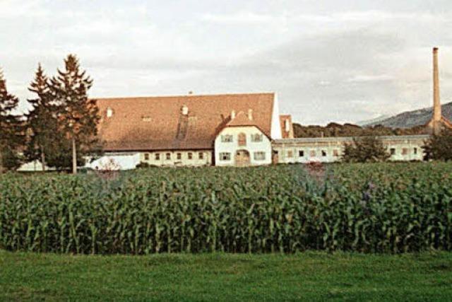 Der Bauernhof in der Stadt