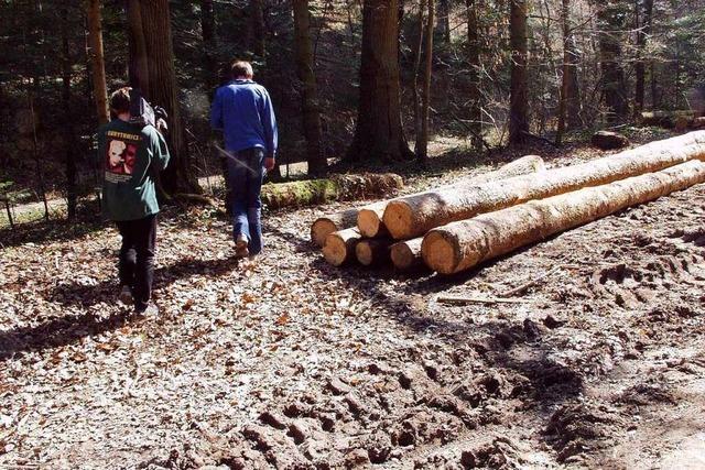 Erinnerungen: Was der Fall Heidrun Pursche 2003 in Ehrenkirchen und Bad Krozingen auslöste