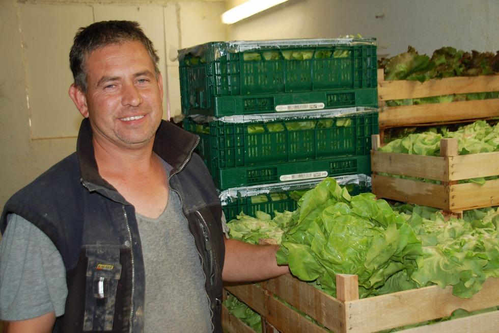 Gemüsekultur Leimenstoll - Vörstetten