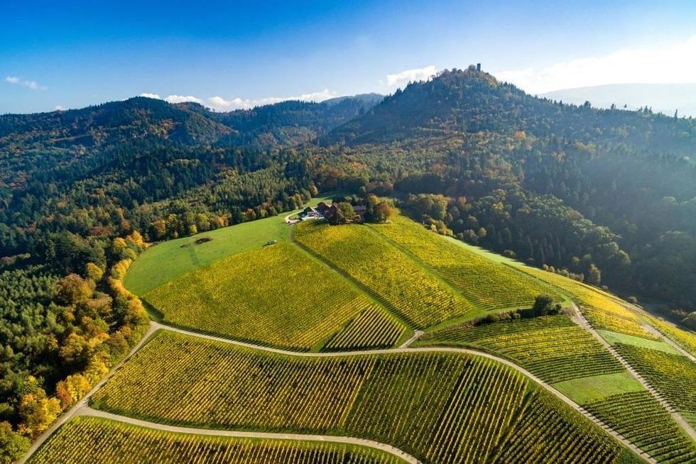 Straußenwirtschaft Weingut Nägelsförst - Baden-Baden
