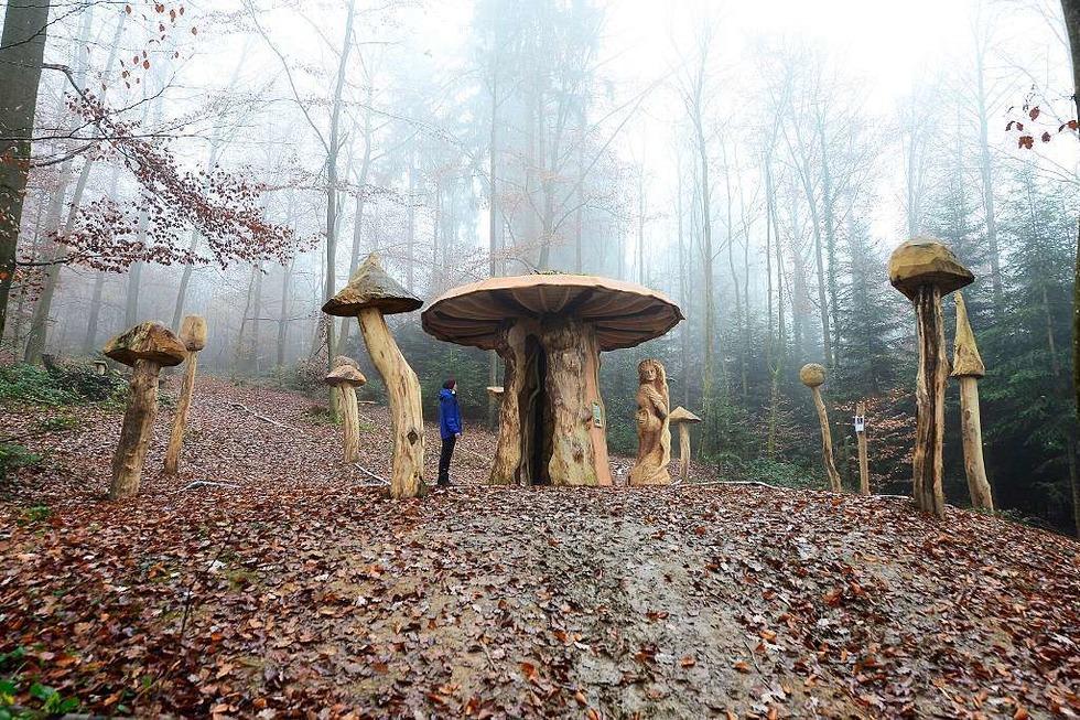 Mycelium Pilzlehrpfad - Freiburg