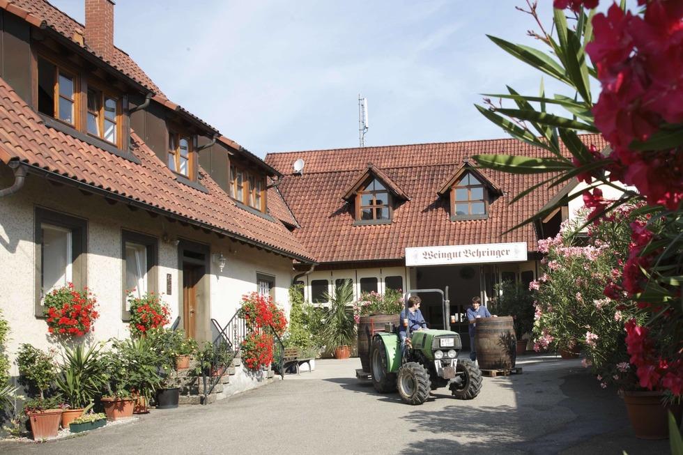 Weingut Behringer (Britzingen) - Müllheim