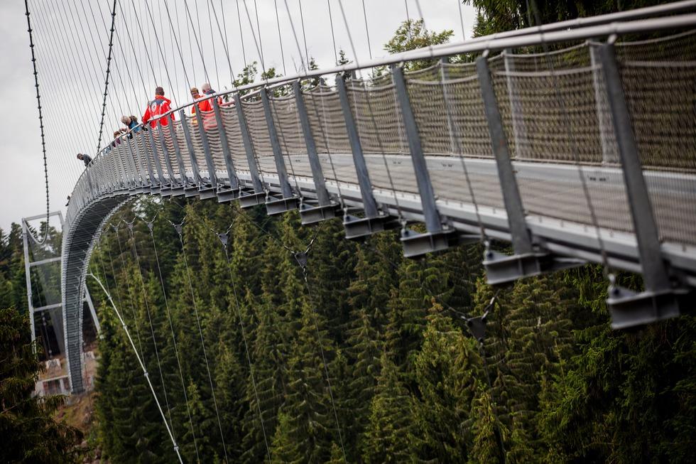 Wildline Hängebrücke Bad Wildbad - Bad Wildbad