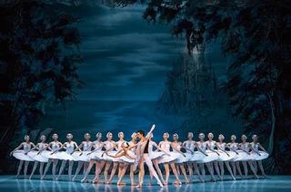 Schwanensee und La Traviata – Oper und Ballett in Freiburg