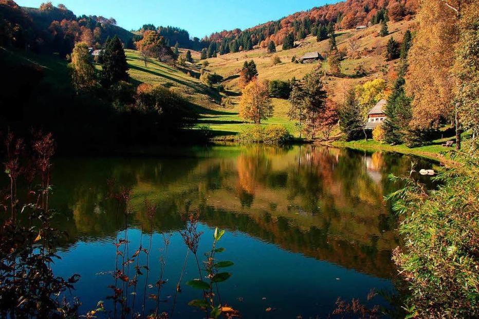 Dobelsee (Hofsgrund) - Oberried