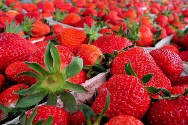 Hans Peter Bressel Obst- & Gemüsehof