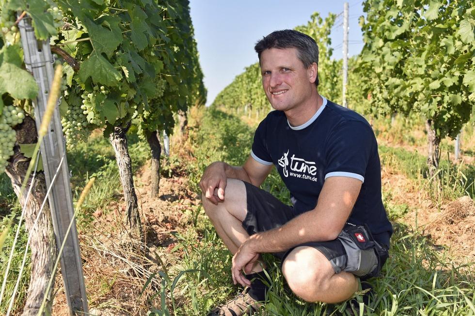 Weinbau Martin Linser (Opfingen) - Freiburg