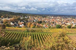 Stadtgebiet Endingen