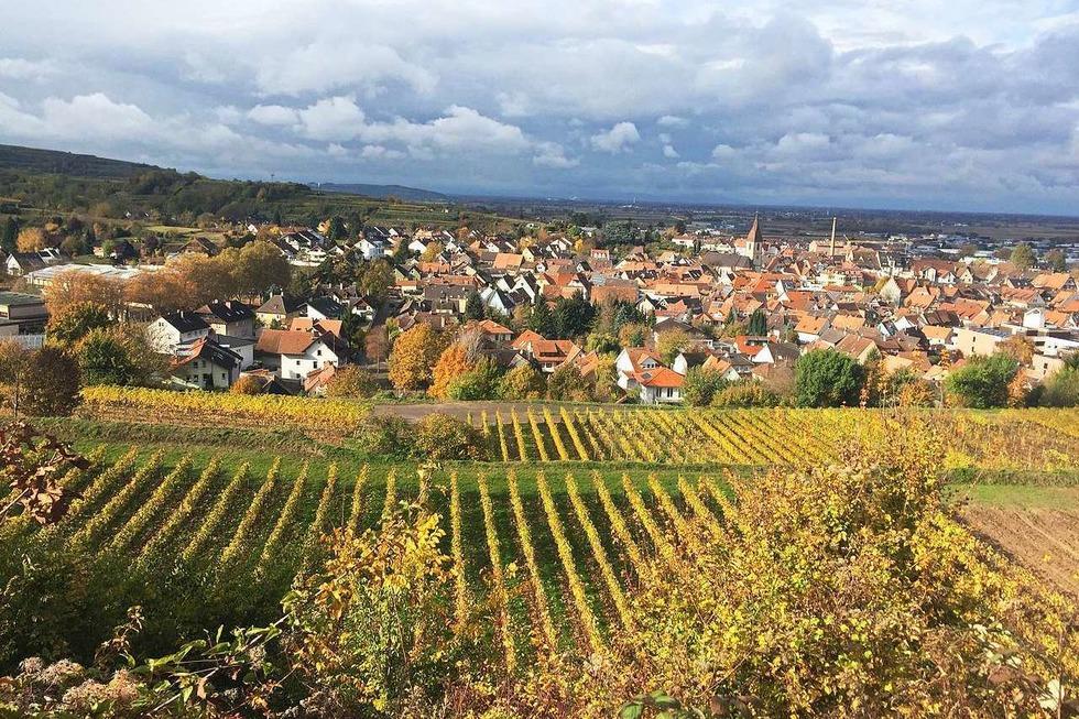 Stadtgebiet Endingen - Endingen