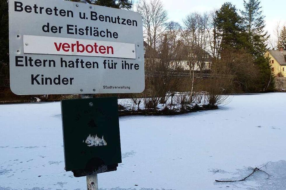 Eisweiher Neustadt - Titisee-Neustadt