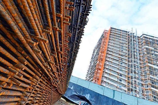 Gemeinderat beschließt 50 Prozent geförderten Mietwohnungsbau für Dietenbach