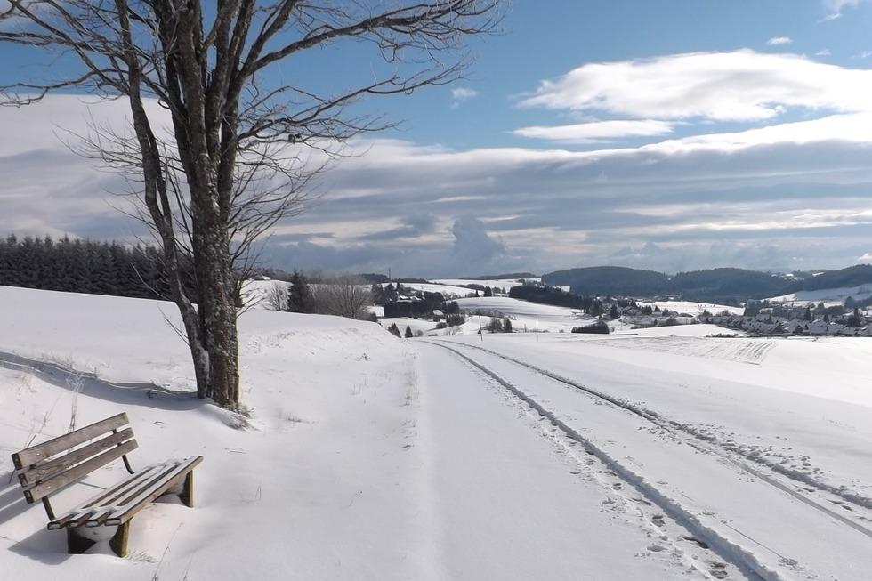 Ödland-Loipe - Herrischried