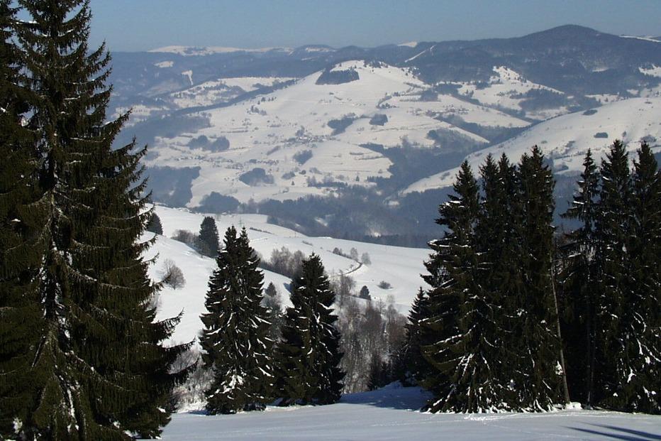 Herzogenhorn-Loipe - Bernau