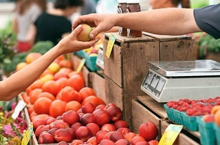 Die Zukunft des Shoppings: Umweltbewusst und regional einkaufen