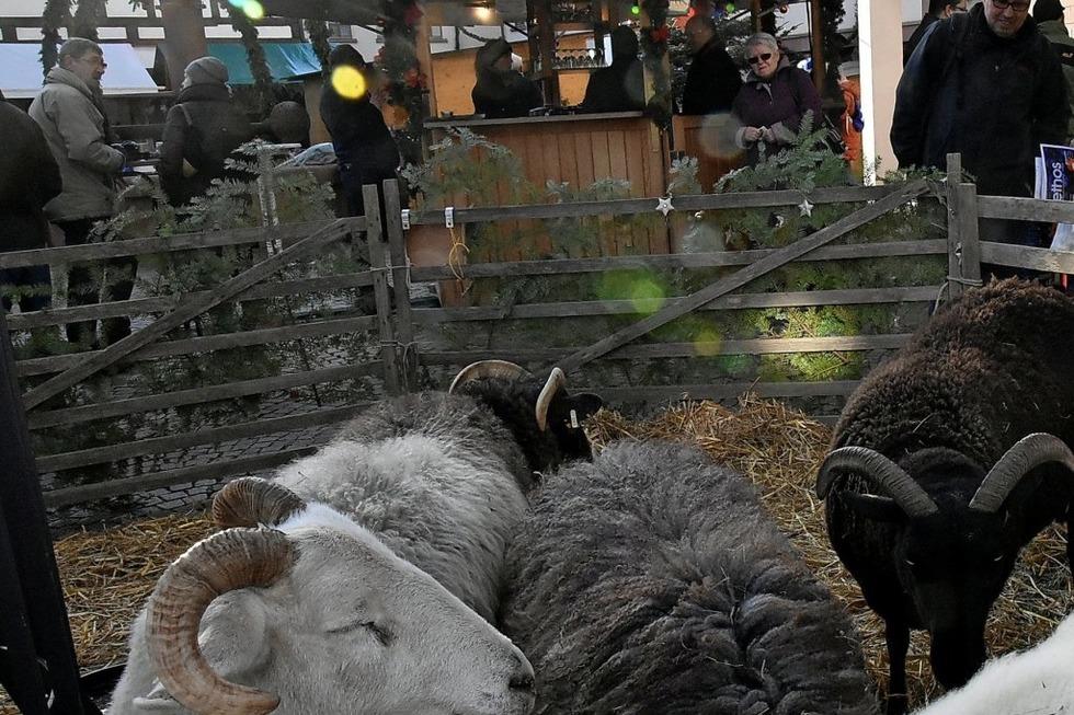Weihnachtsmarkt Gundelfingen.Weihnachtsmarkt Gundelfingen Adventsstimmung Im Ortszentrum Mit