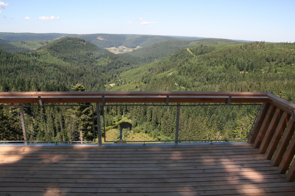 Ellbachseeblick Aussichtsplattform - Baiersbronn