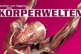 Die Ausstellung Körperwelten kommt nach Freiburg