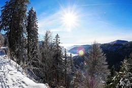 Fotos: Winterwunderland im Hochschwarzwald