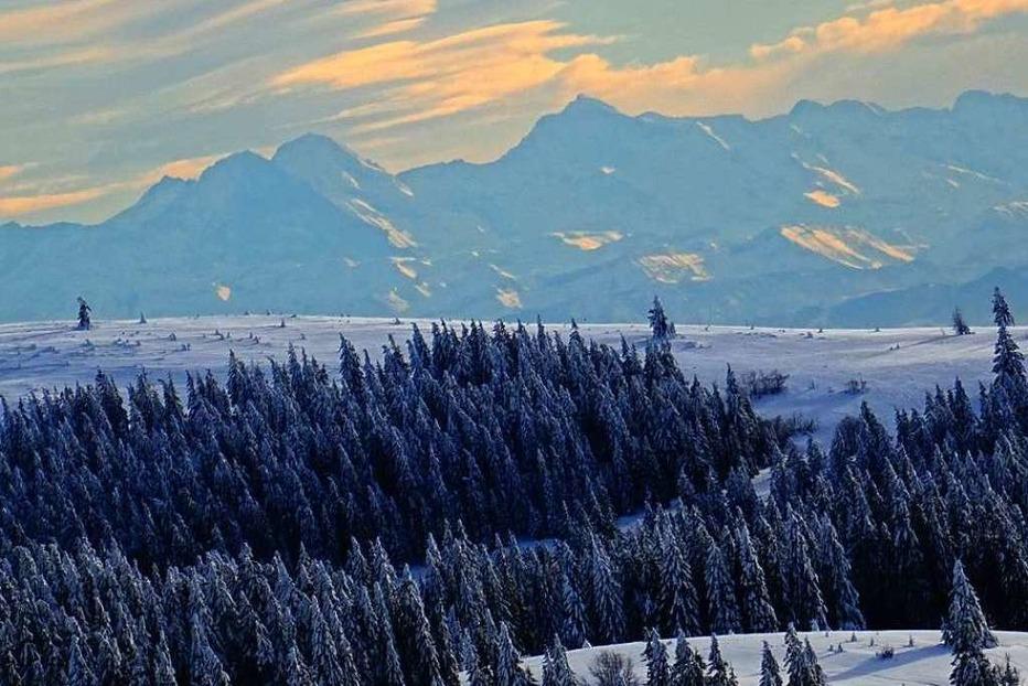 Fotos: Ein Winterspaziergang am Feldberg