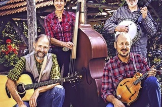 Acoustic String Connection in Schluchsee-Blasiwald