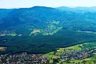 Die Debatte um den Müllheimer Eichwald geht lebhaft weiter