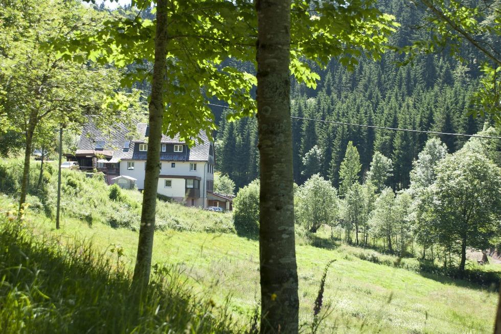 Artwood - Gütenbach