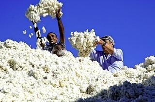 Filmgespräch zum Thema Fair-Trade