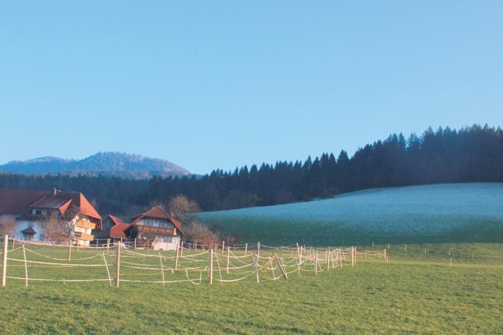 Sterrenhof - Elzach