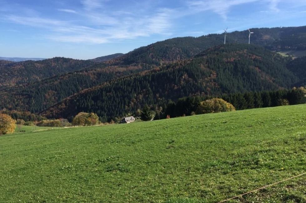 Buchhäuslehof - Horben