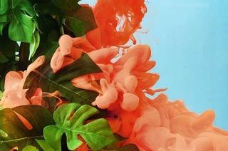 Koralle, Gold und Ocker – wer bestimmt eigentlich Trendfarben?