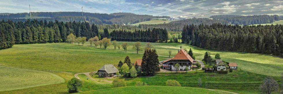 Über 100 Ausflugstipps für schöne Tage im Herbst
