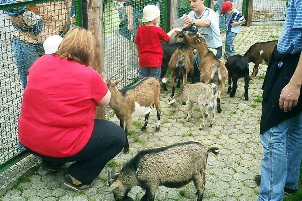 Familienfreizeitpark Funny-World (Kappel) - Kappel-Grafenhausen