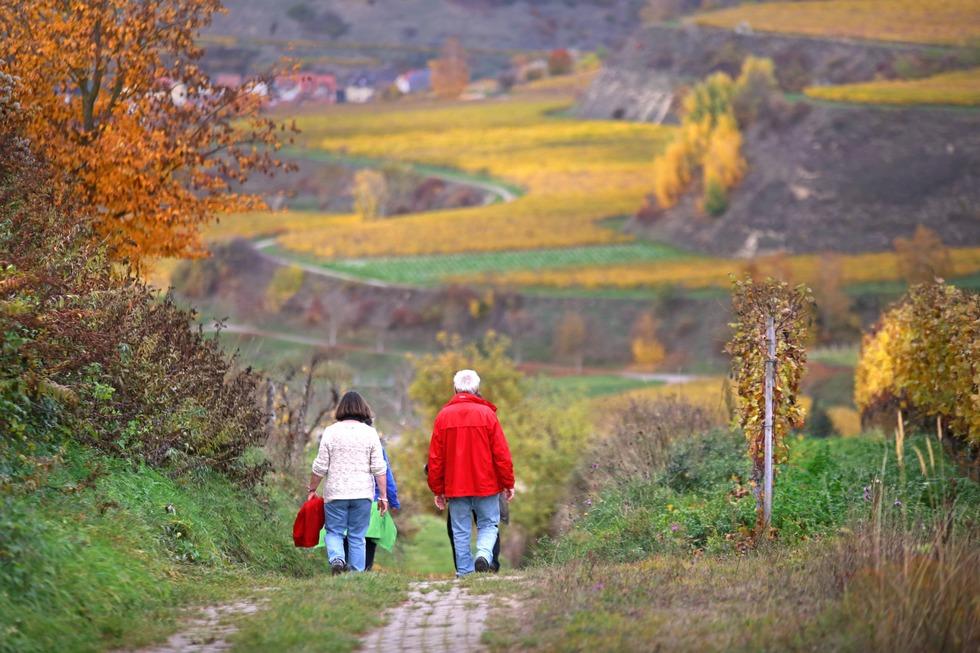Vogtsburg-Touristik (Oberrotweil) - Vogtsburg