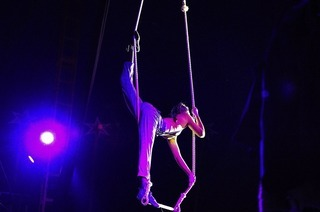 Zirkus Ragazzi gastiert in Müllheim