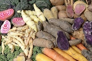 Wissen rund um alte Sorten von Obst und Gemüse