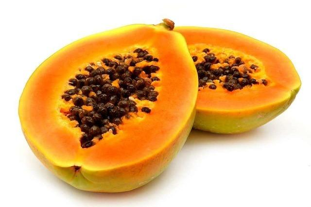 Scharfe Süße: die Papaya