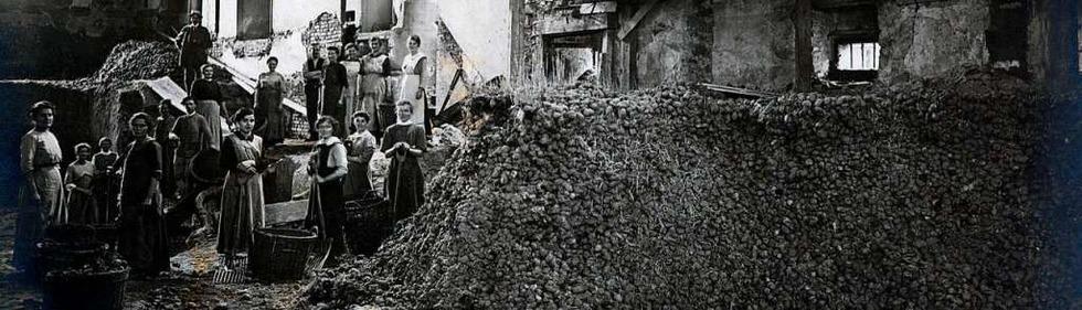 Blick ins Archiv: Wie Freiburger den Ersten Weltkrieg erlebten