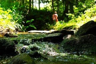 Wasserpfad Sulzbachtal